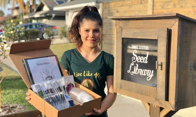 Alicia Seed Libraries